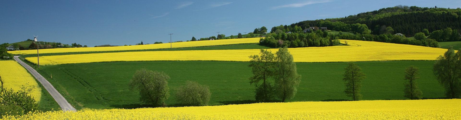 Agriculture : 3600 scientifiques dénoncent la PAC européenne