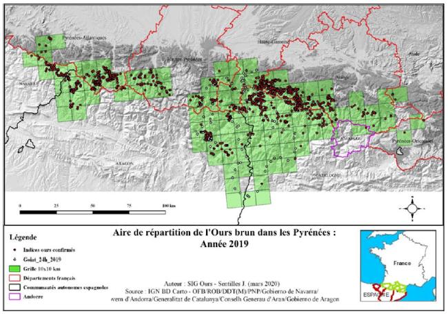 Aire de répartition de l'Ours brun dans les Pyrénées en 2019.