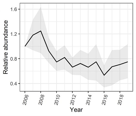 chauve-souris en déclin en France